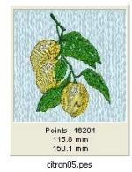 citron05 2
