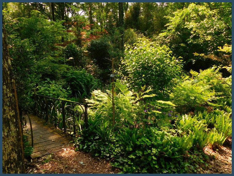 Arboretum des prés de Culand25