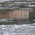 Ile de la Métairie - février 2012