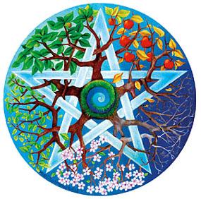 Etoile___cinq_branches_et_nature