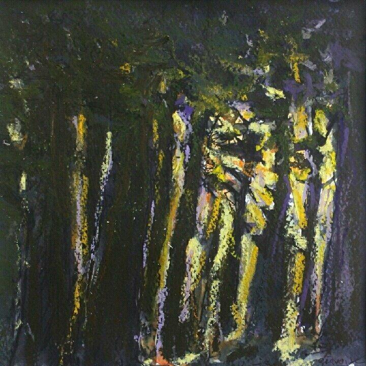 Contre jour dans la forêt