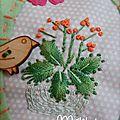 Passion succulentes #4
