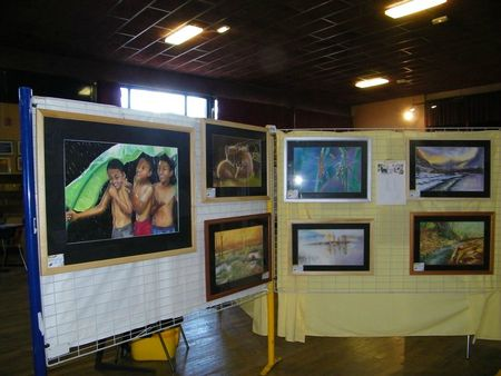 expo chaussin 2012 001