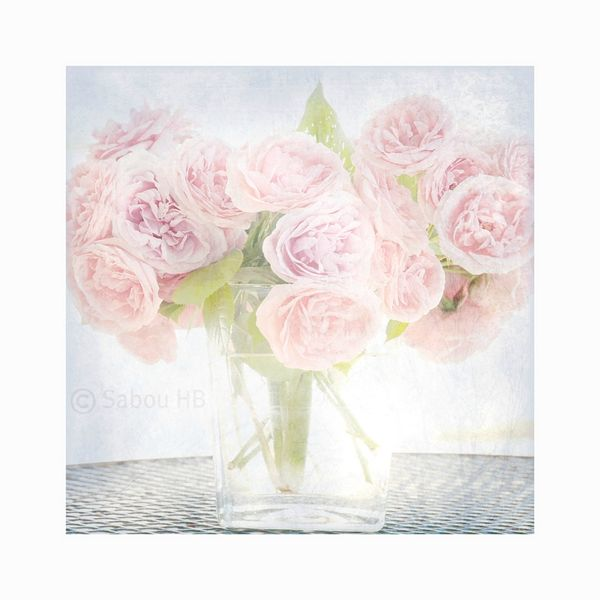 Bouquet de roses bloger