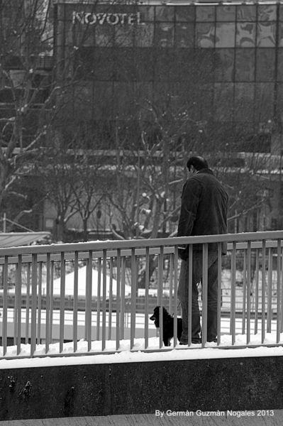 Paris - 4° sous la neige 1 078