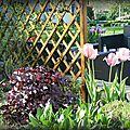 Pur bonheur au jardin