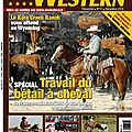 Article sur newestern