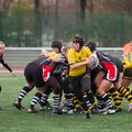 36IMG_0812T