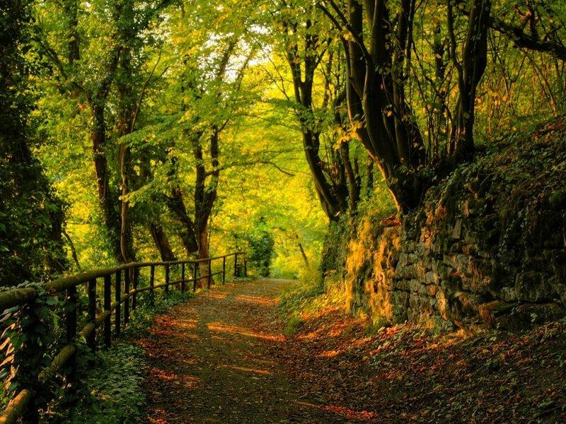 automne055