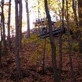 Mont royal 21oct 043