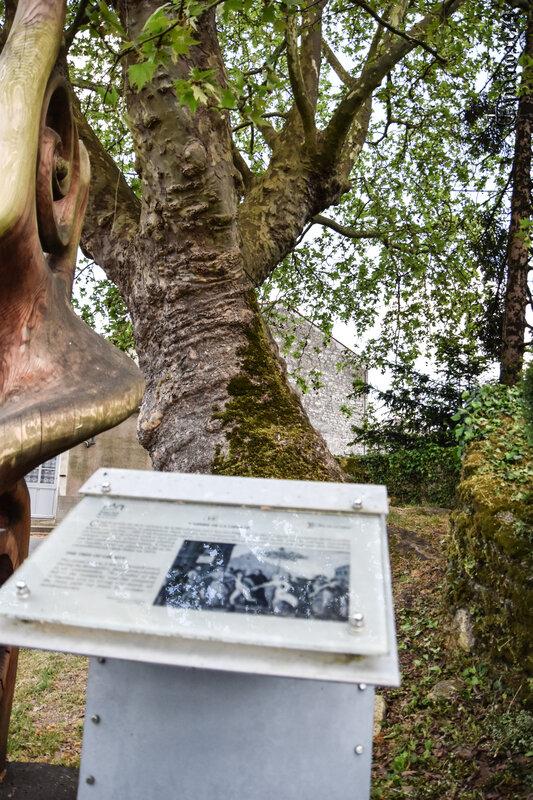 Les arbres de la liberté de la Révolution de 1789 (5)