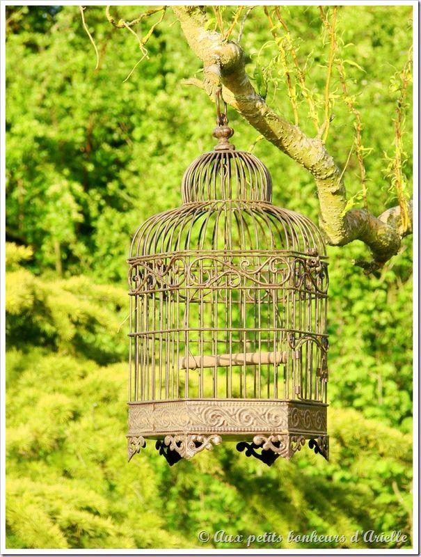 Cage à oiseaux 20 © Aux petits bonheurs d'Arielle