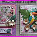 Cartes tropicales - suite