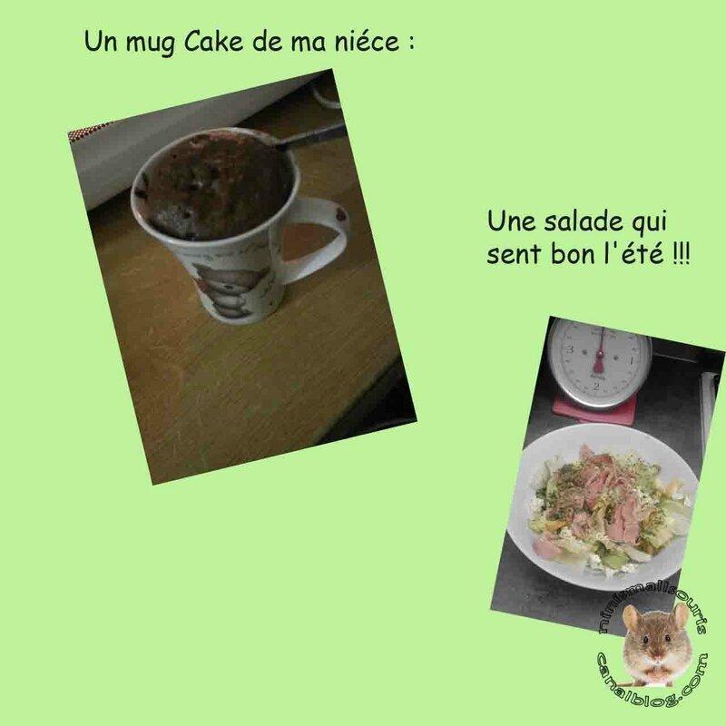 mug cake et salade