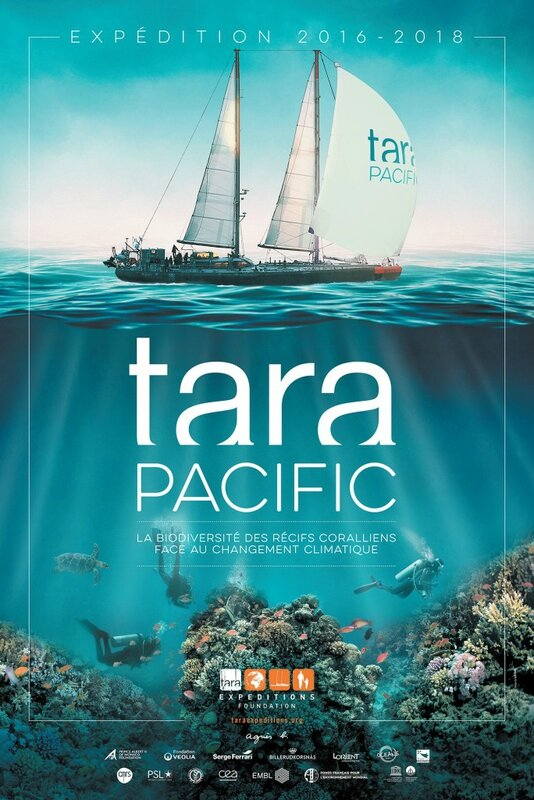 affiche-tarapacific-web-684x1024