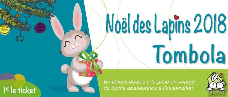 Noël-des-lapins-Panneau-sitePlan-de-travail-7-pdf