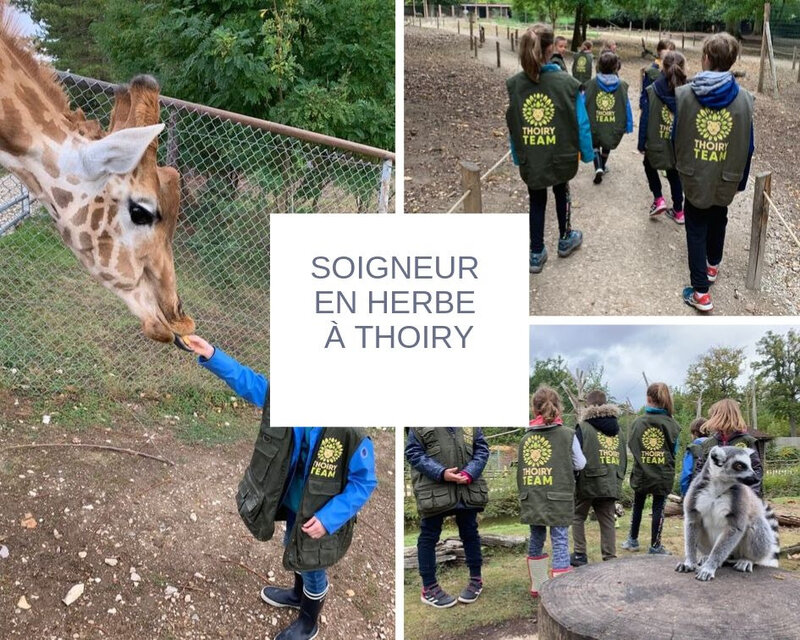 Soigneur en herbe à Thoiry ©Kid Friendly