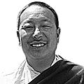 Bangri chongtrul rinpoche 🕉