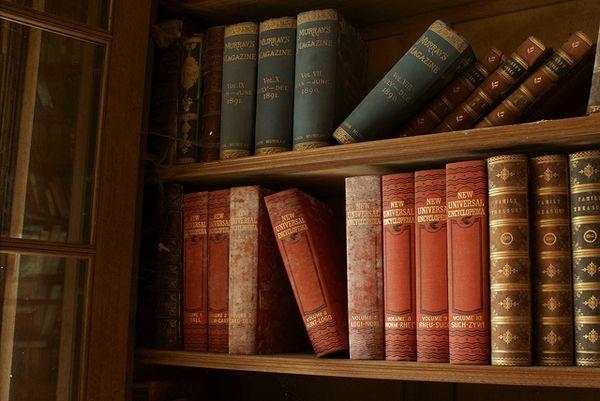 Berkyn Manor 28dayslater Books