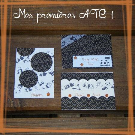 ATC Marianne série 1 (2)