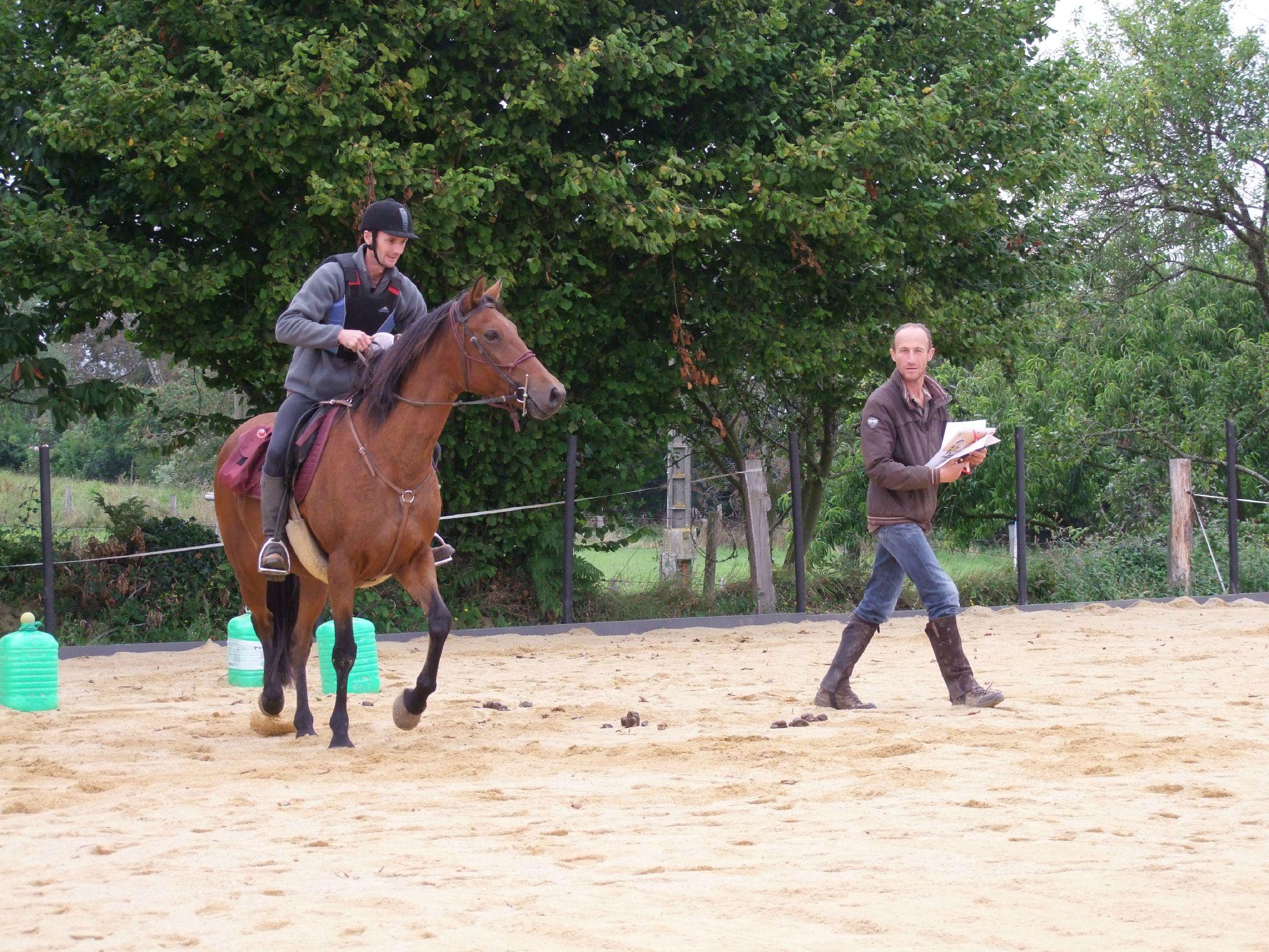équitation d'extérieur - parcours en terrain varié (132)