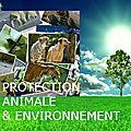Protection Animale . Nature . Environnement