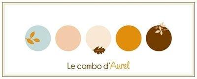 CS-Combo-Aurel-2017-11