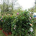 Parcs et Jardins LISLEDON 45 (4)