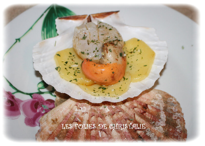 Coquilles st jacques 3