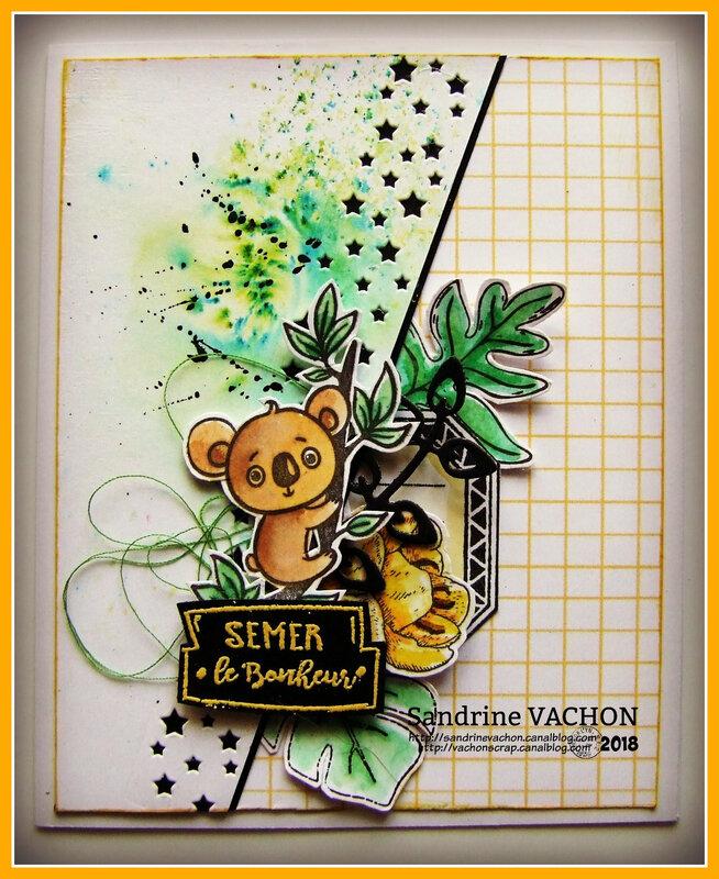 Carte SEMER LE BONHEUR dt PCC (1)