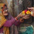 Des fleurs pour les offrandes des temples