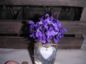 violettes_006