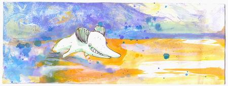 mickey_dolphin