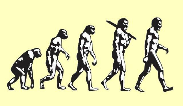 L'Homme évolution