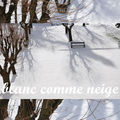 :: blanc comme neige...