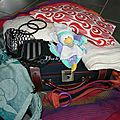La valise d'une maman porteuse