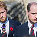prince harry et william