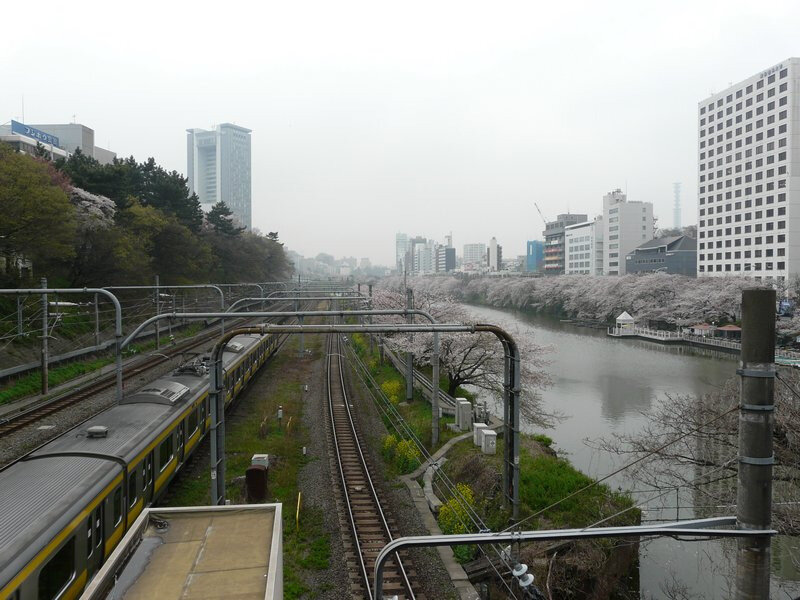 Canalblog Tokyo Cerisier 2010 Kagurazaka Metro01
