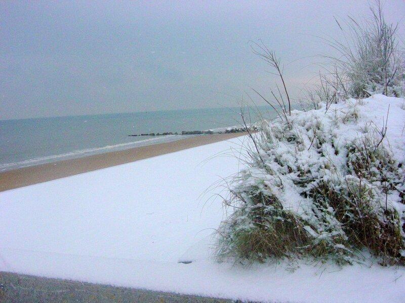 charme en hiver (7)