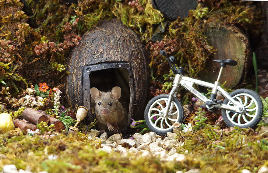 miniature-mice-family-house-simon-dell-52