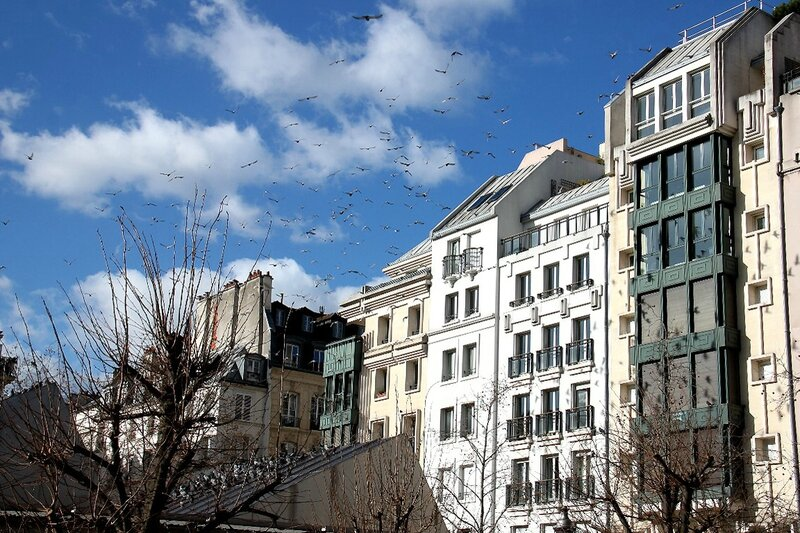 15-Pigeons, ombres Beaubourg_2696