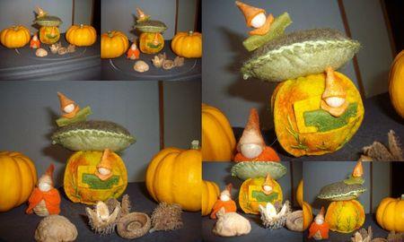 2011-10-16 citrouille et champignon
