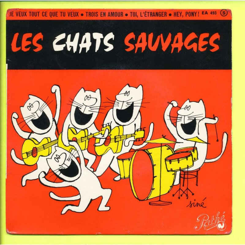 chats sauvages siné