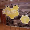 Exposition sur les abeilles dans le hall de l'amphithéâtre du laboratoire arago