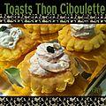 Toasts thon ciboulette