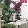 2012_05260543_capri_entrée hôtel de luxe