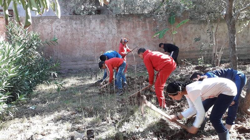 un temps de l'action désherbage de la bande de terre où vont être planté les plants de suage officinale