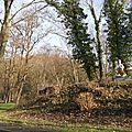 Flénu - parc 5 - 20121215_05