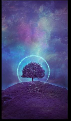 ➡️Les effets de l'esprit humain et de l'intention sur l'environnement.