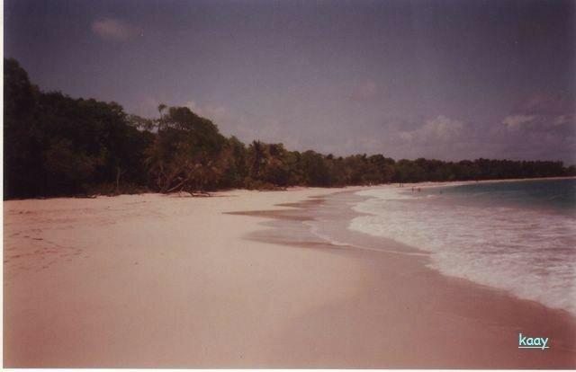 Martinique plage des Salines